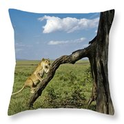 Heading For A High Spot Throw Pillow