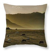 Heading Home In The Evening Throw Pillow