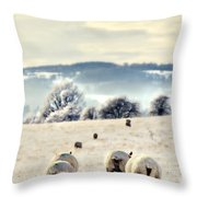 Heading Home Throw Pillow by Meirion Matthias