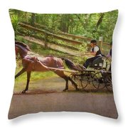 Heading To The Gulch Throw Pillow