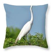 Headless Great Egret Throw Pillow