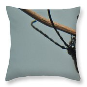 Heads Up And Hanging On Throw Pillow