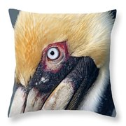 Headshot Brown Pelican Throw Pillow