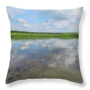 Headwaters Of The Mississippi Throw Pillow