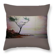 Health Wealth And Benevolence Throw Pillow
