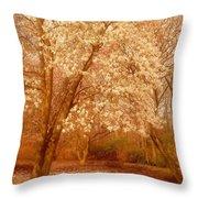 Hear The Silence - Holmdel Park Throw Pillow