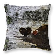 Heart Carved In Tree Throw Pillow
