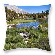 Heart Lake Folaige Throw Pillow