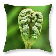 Heart Of A Fern Throw Pillow