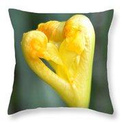 Heart Of Iris Throw Pillow