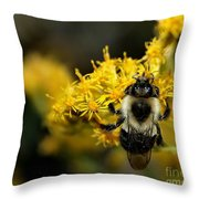 Heart Of The Bee Throw Pillow