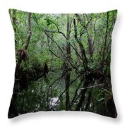 Heart Of The Swamp Throw Pillow