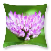 Heart Shaped Clover Throw Pillow
