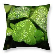 Heart Shaped With Water Drops Throw Pillow