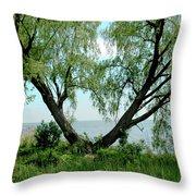 Heart Tree On Lake Saint Clair Throw Pillow