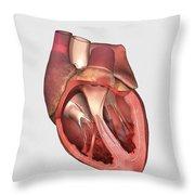 Heart Valves Showing Pulmonary Valve Throw Pillow