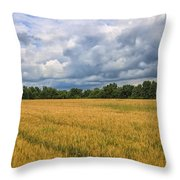 Heartland Storm Throw Pillow