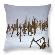 Heartland Winter Throw Pillow