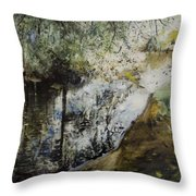 Heat And Shade Throw Pillow