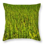 Heather Lake Grass 2 Throw Pillow