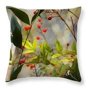 Heavenly Bamboo Throw Pillow