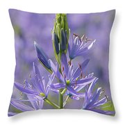Heavenly Blue Camassia Throw Pillow
