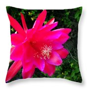 Heavenly Epiphyllum Orchid Cactus Throw Pillow