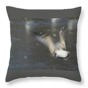 Heavenly Flight Throw Pillow