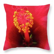 Heavenly Hibiscus 01 Throw Pillow