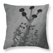 Heavenly Hibiscus Bw 13 Throw Pillow