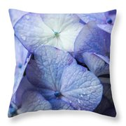 Heavenly Hydrangeas Throw Pillow