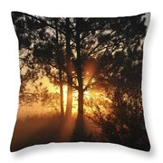 Heavenly Throw Pillow