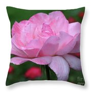 Heavenly Pink Rose Throw Pillow