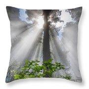 Heaven's Light Throw Pillow