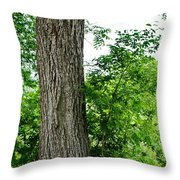Heaven's Tree - Color Version Throw Pillow