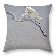Heavy Flight Throw Pillow