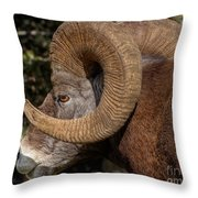 Heavy Horns Throw Pillow