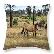 Heber Wild Horses 15 Throw Pillow