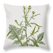 Hedge Mustard Throw Pillow