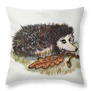 Hedgehog  Throw Pillow
