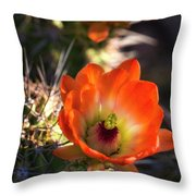 Hedgehog Flowers In Dawn's Early Light  Throw Pillow