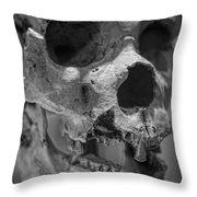 Heidelbergensis Throw Pillow