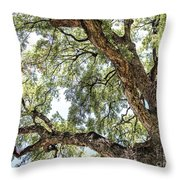 Heights Throw Pillow