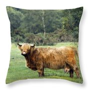 Heilan Coo Throw Pillow