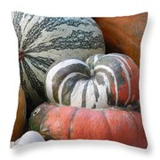 Heirlooms On Display #1 Throw Pillow