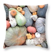 Heirlooms On Display #2 Throw Pillow