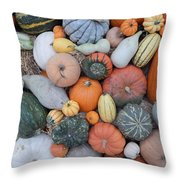 Heirlooms On Display #3 Throw Pillow