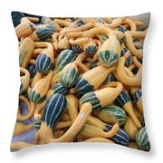 Heirlooms On Display #4 Throw Pillow
