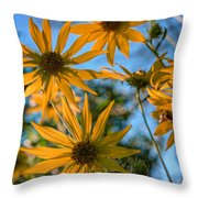 Helianthus Giganteus Throw Pillow