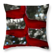 Heliconia Flowering Plant Throw Pillow